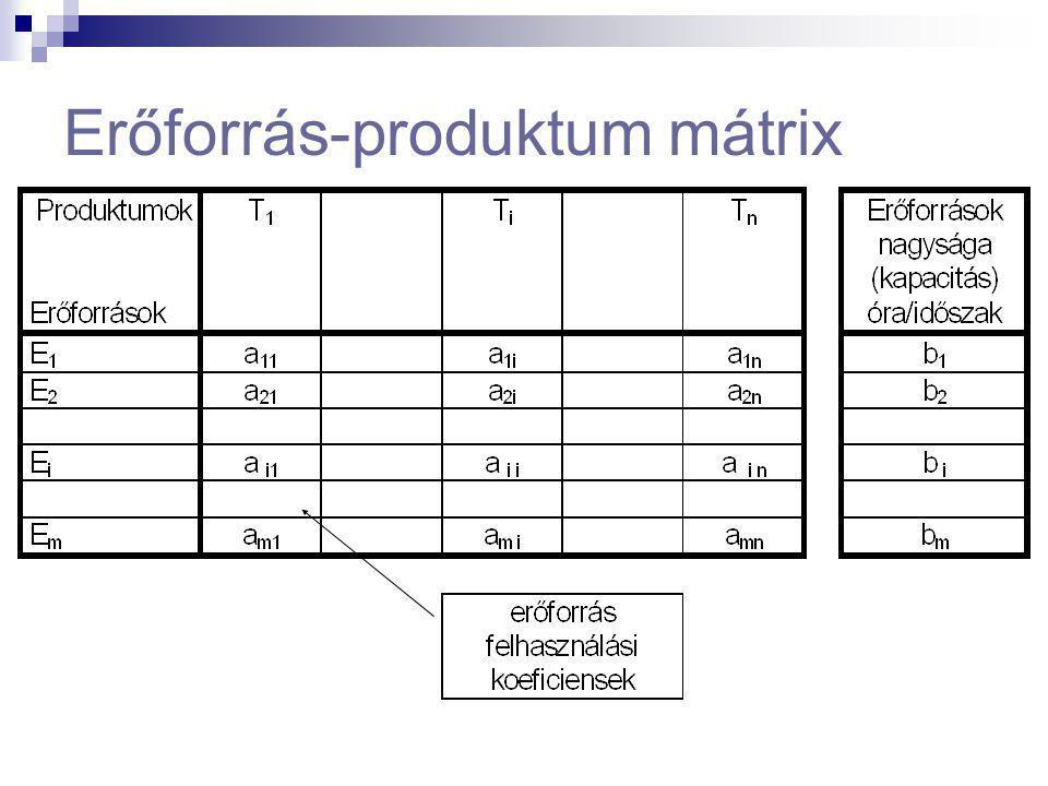 Erőforrás-produktum mátrix