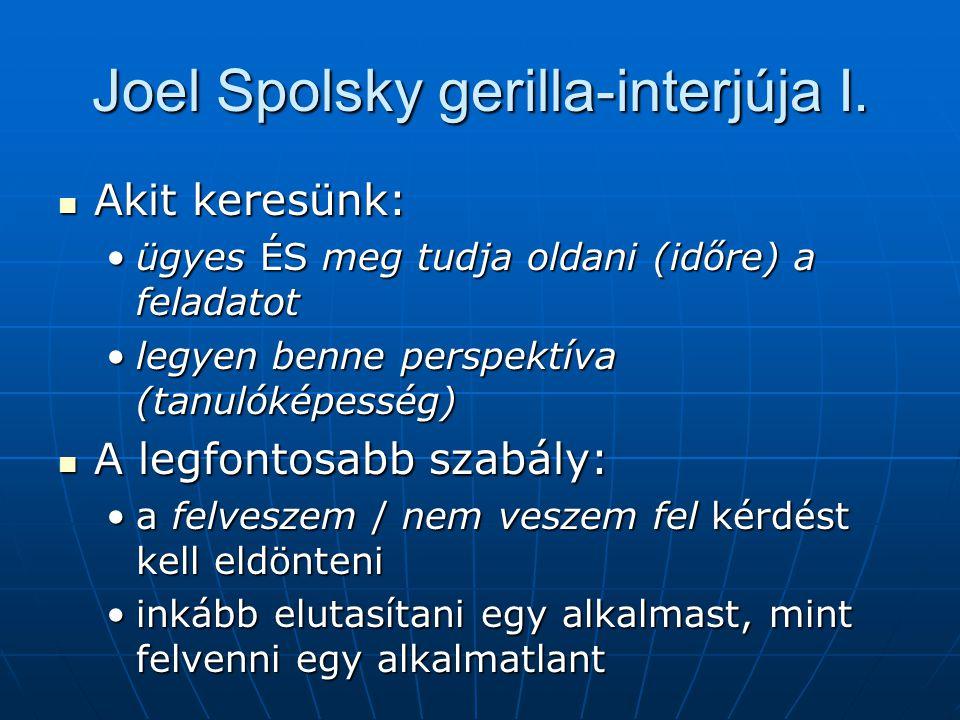 Joel Spolsky gerilla-interjúja I.