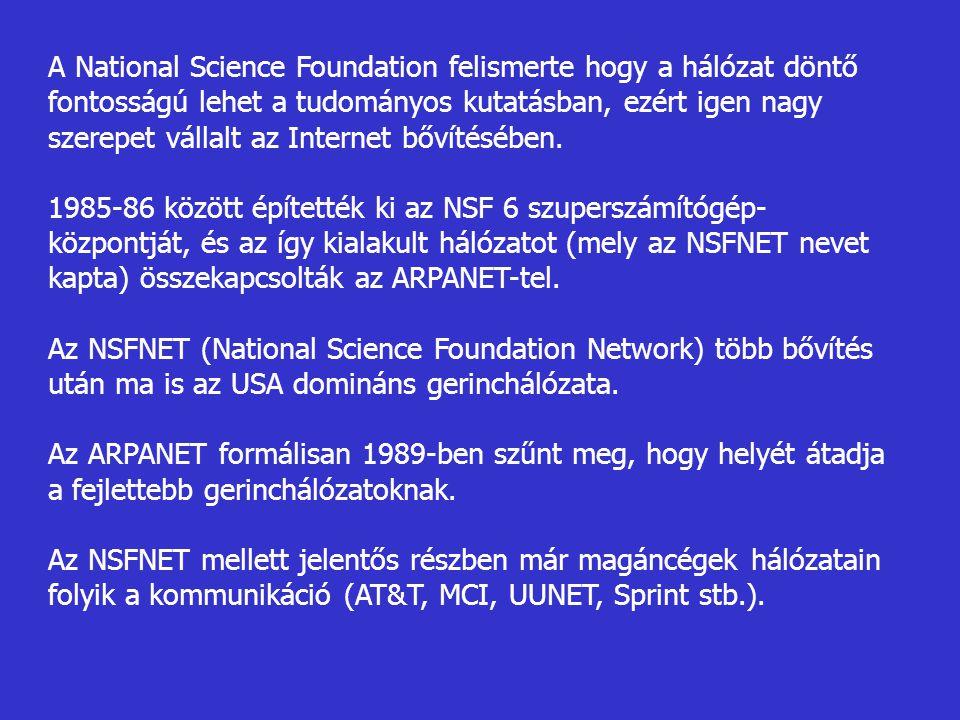 A National Science Foundation felismerte hogy a hálózat döntő fontosságú lehet a tudományos kutatásban, ezért igen nagy szerepet vállalt az Internet bővítésében.