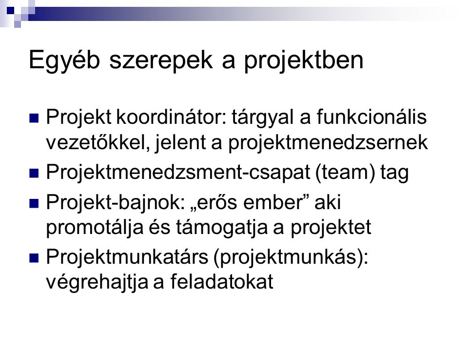 Egyéb szerepek a projektben