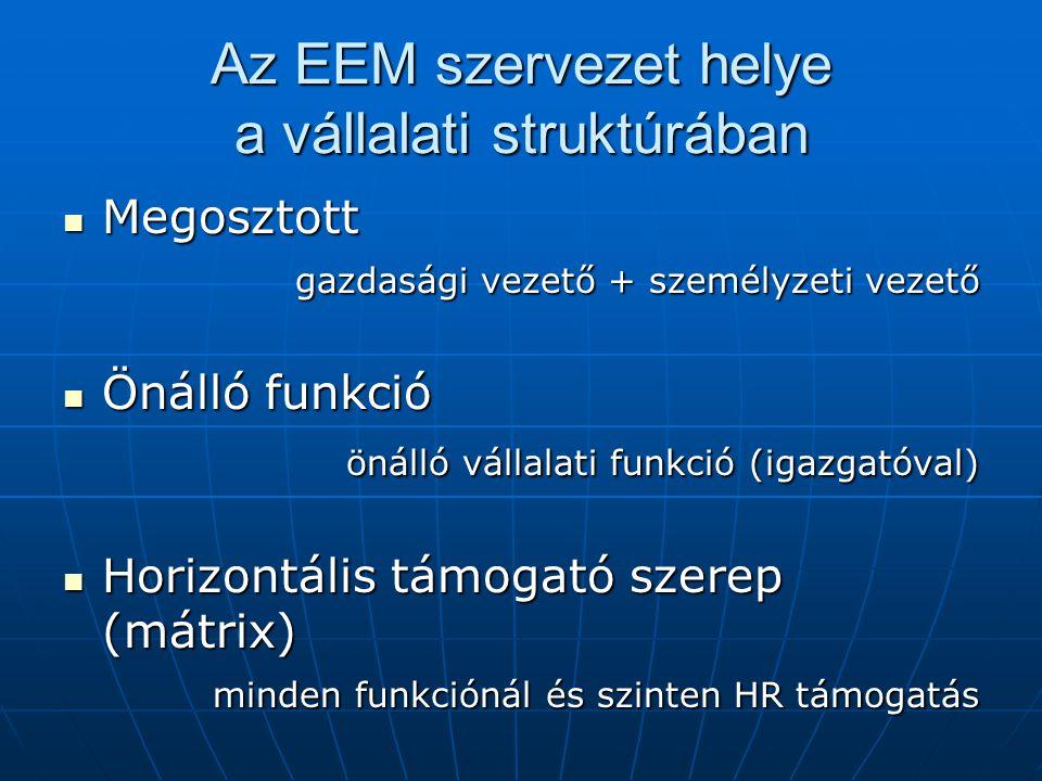 Az EEM szervezet helye a vállalati struktúrában