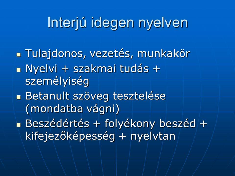 Interjú idegen nyelven