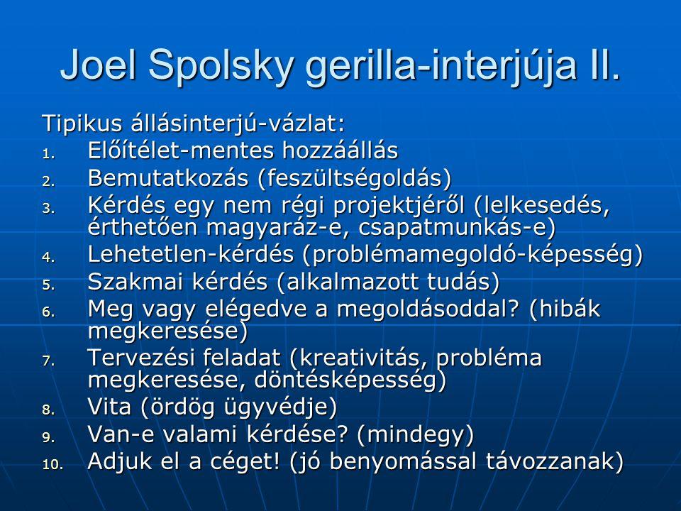 Joel Spolsky gerilla-interjúja II.