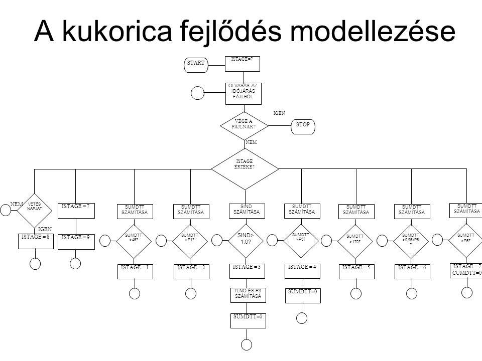 A kukorica fejlődés modellezése