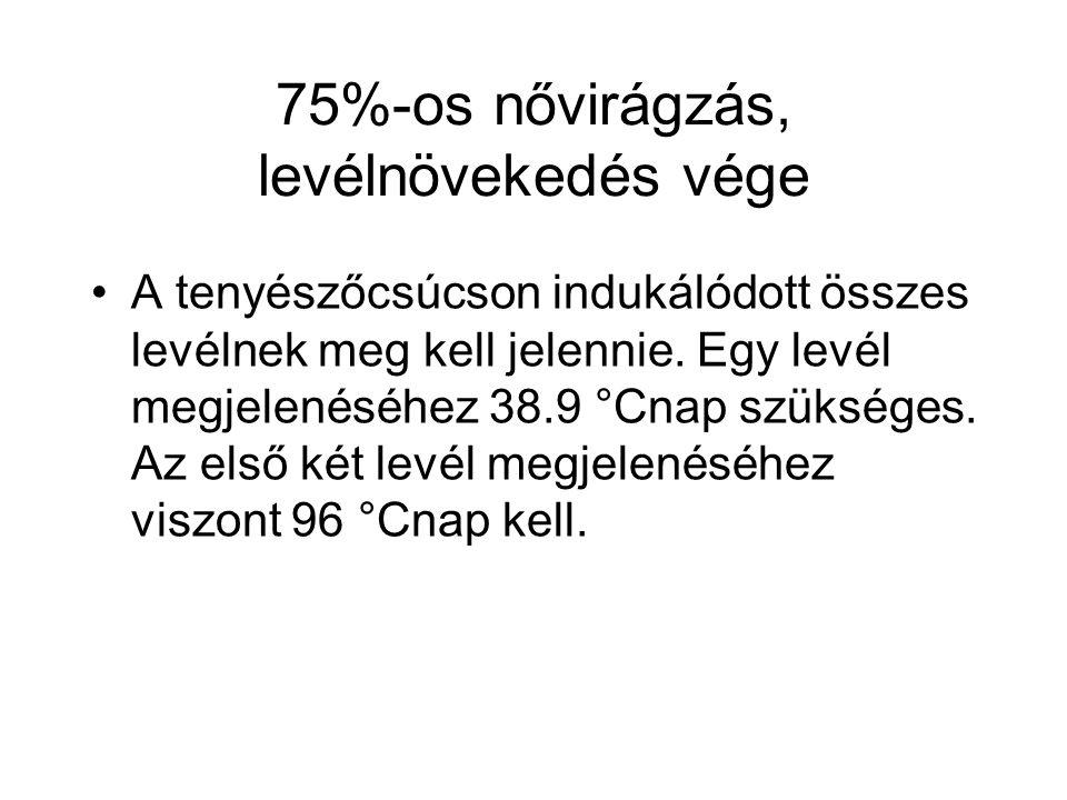 75%-os nővirágzás, levélnövekedés vége