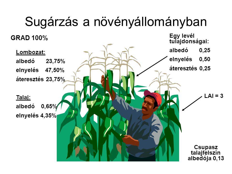 Sugárzás a növényállományban