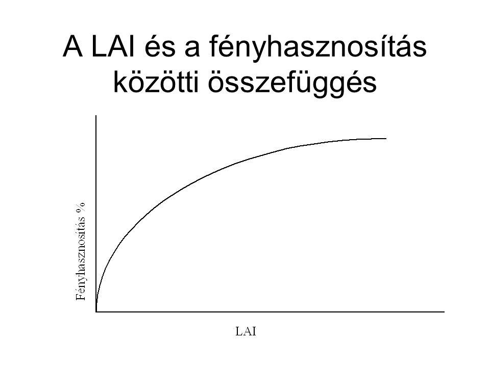 A LAI és a fényhasznosítás közötti összefüggés