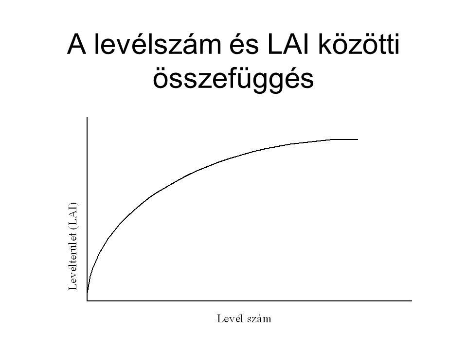 A levélszám és LAI közötti összefüggés