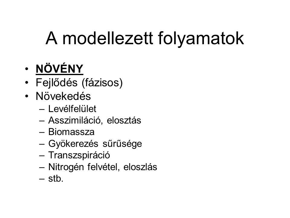 A modellezett folyamatok