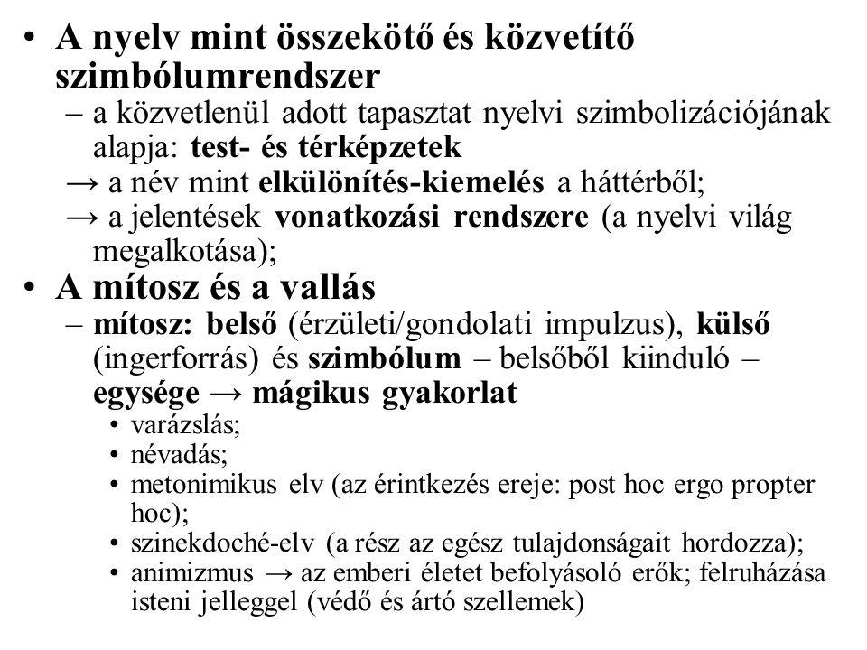 A nyelv mint összekötő és közvetítő szimbólumrendszer