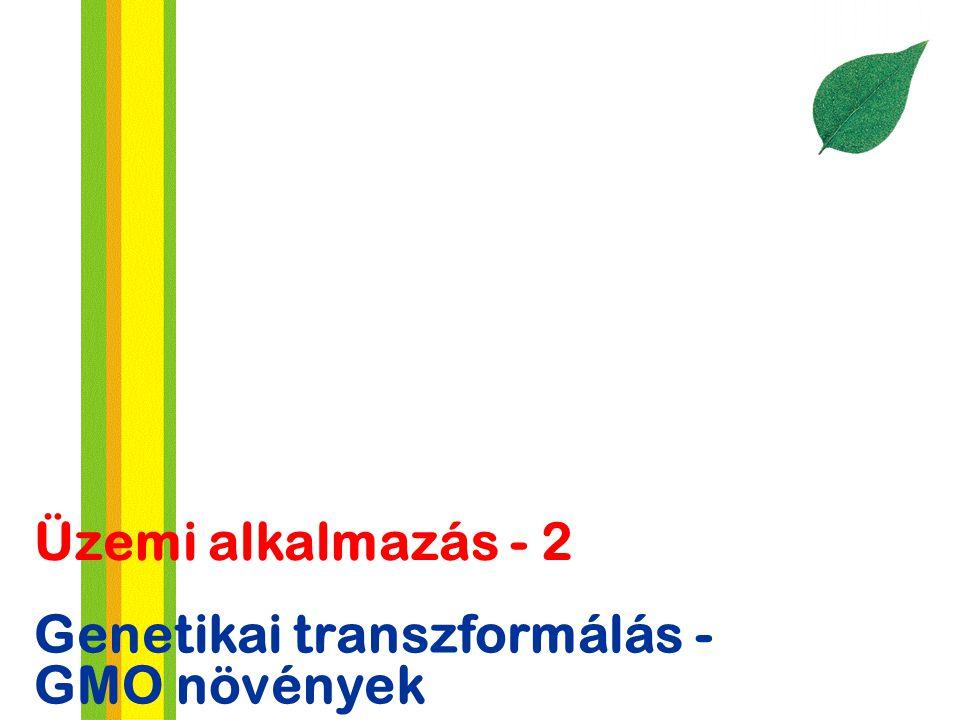 Üzemi alkalmazás - 2 Genetikai transzformálás - GMO növények