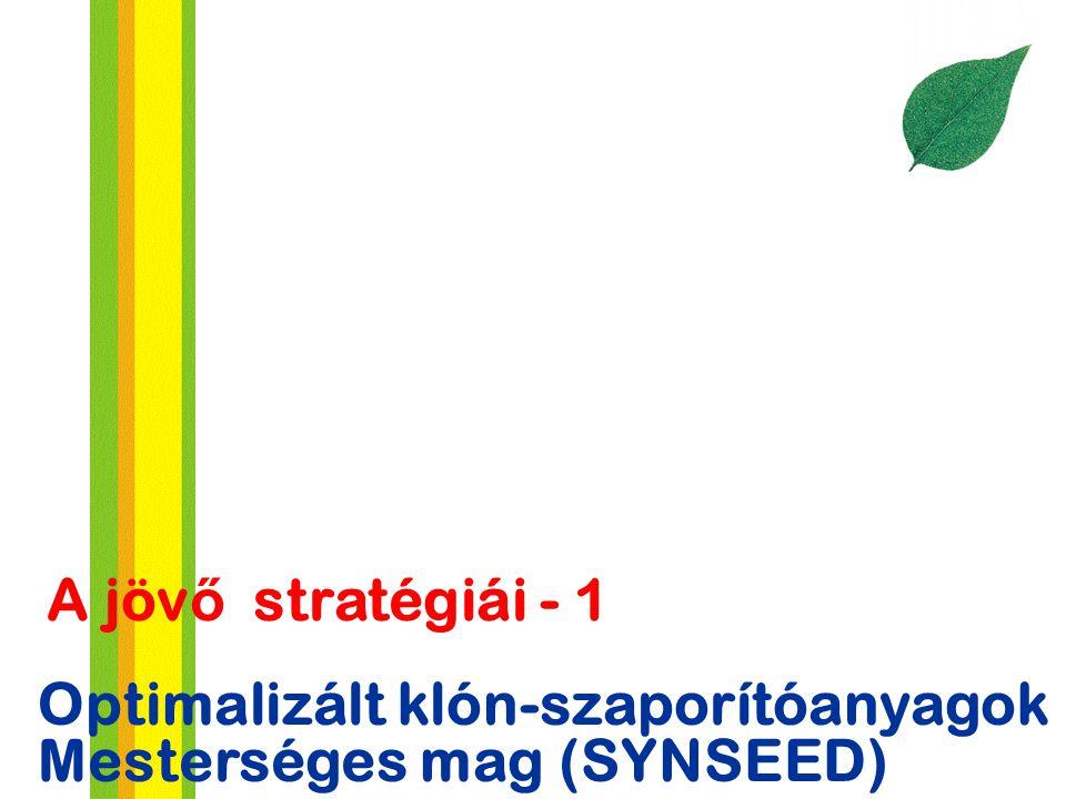 A jövő stratégiái - 1 Optimalizált klón-szaporítóanyagok Mesterséges mag (SYNSEED)
