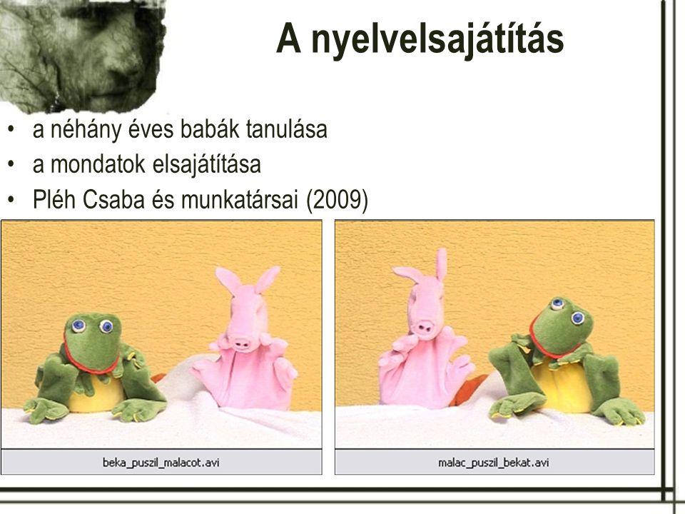 A nyelvelsajátítás a néhány éves babák tanulása