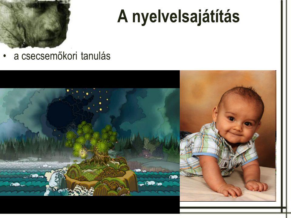 A nyelvelsajátítás a csecsemőkori tanulás
