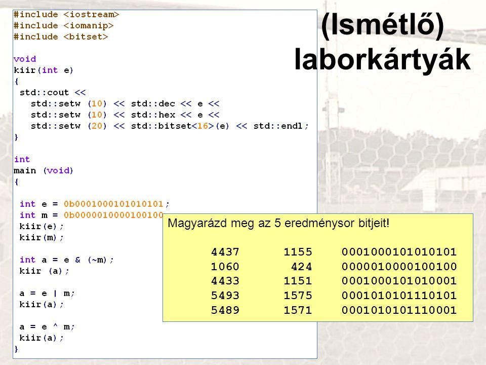 (Ismétlő) laborkártyák Magyarázd meg az 5 eredménysor bitjeit!