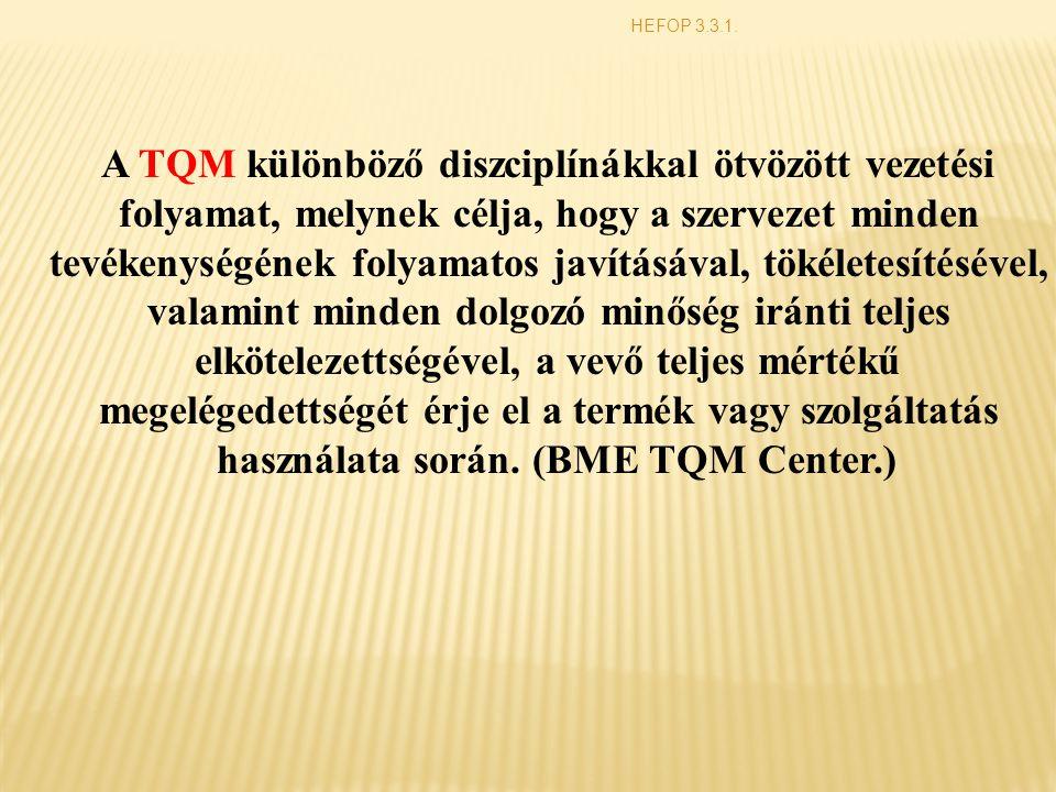 A TQM különböző diszciplínákkal ötvözött vezetési