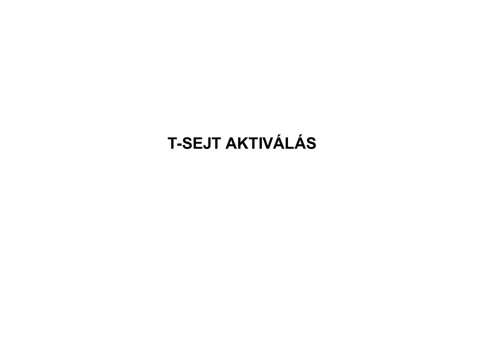 T-SEJT AKTIVÁLÁS