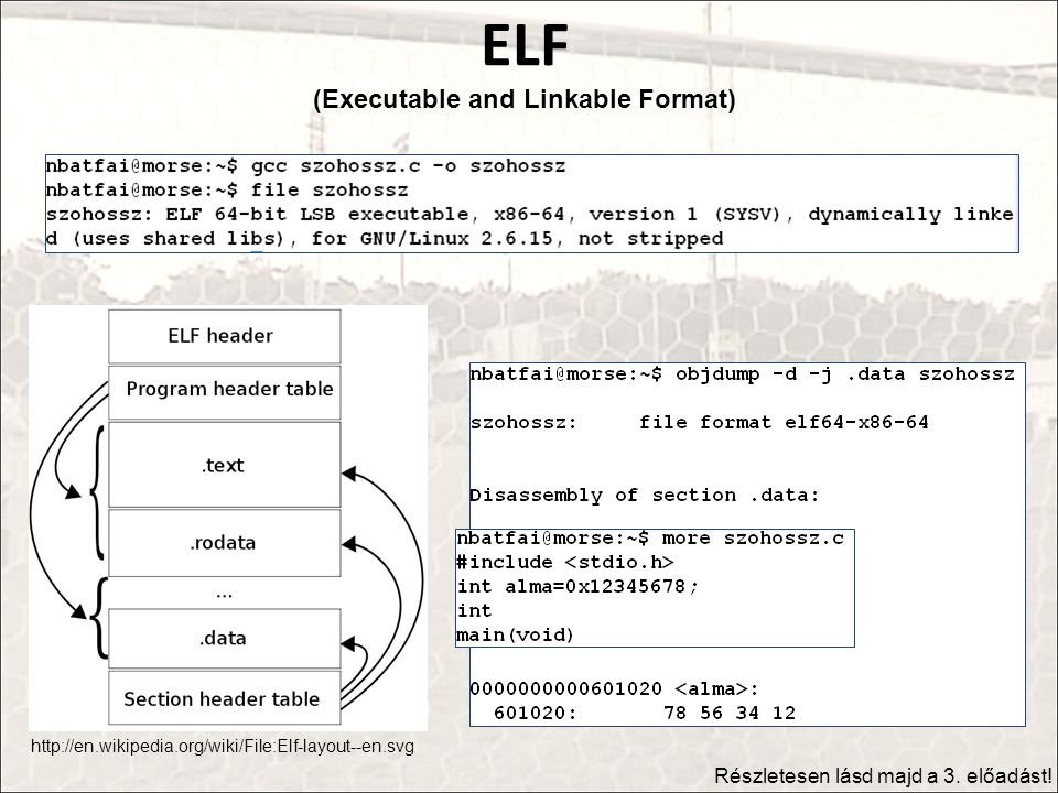ELF (Executable and Linkable Format)