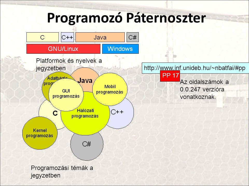Programozó Páternoszter