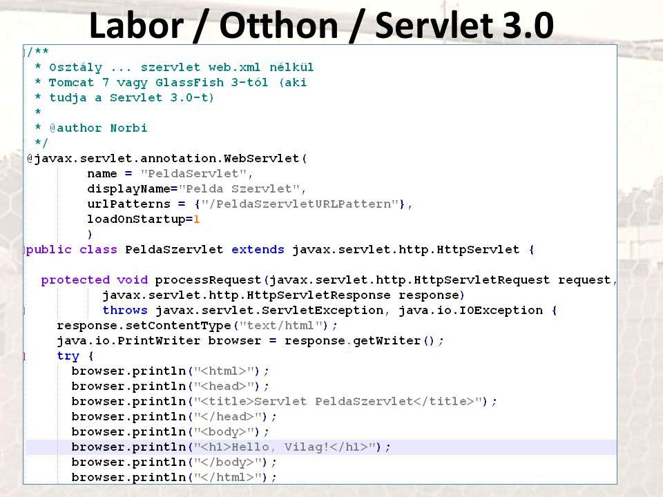 Labor / Otthon / Servlet 3.0