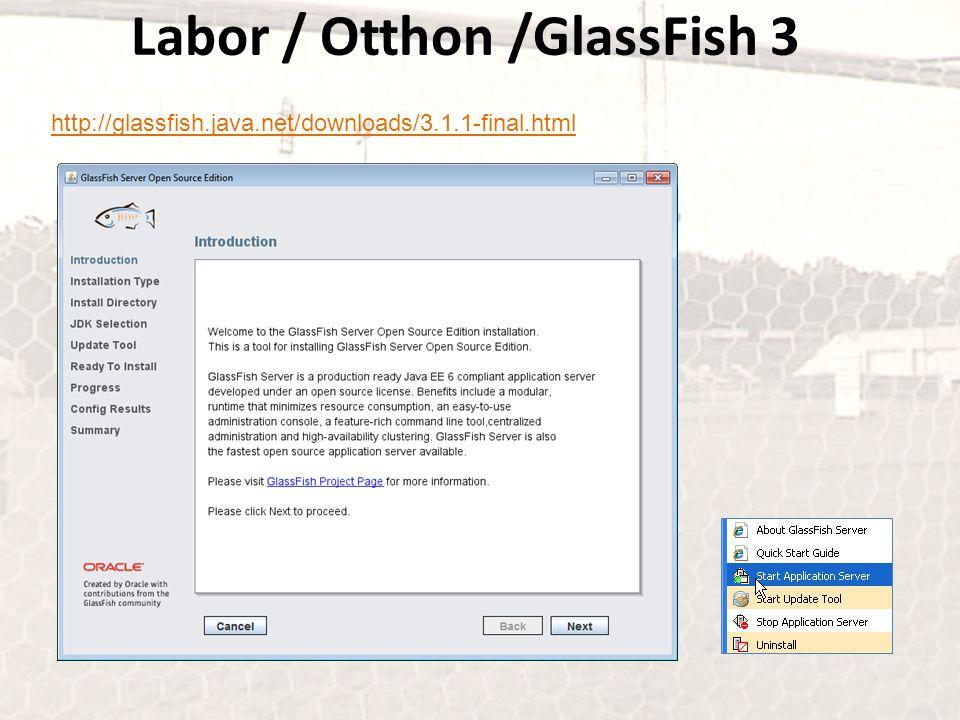 Labor / Otthon /GlassFish 3