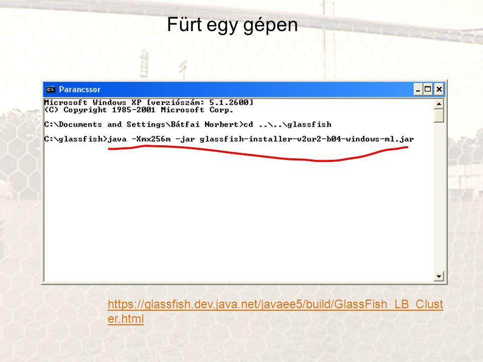 Fürt egy gépen https://glassfish.dev.java.net/javaee5/build/GlassFish_LB_Cluster.html