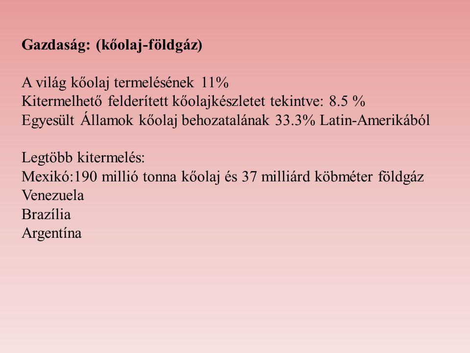 Gazdaság: (kőolaj-földgáz)