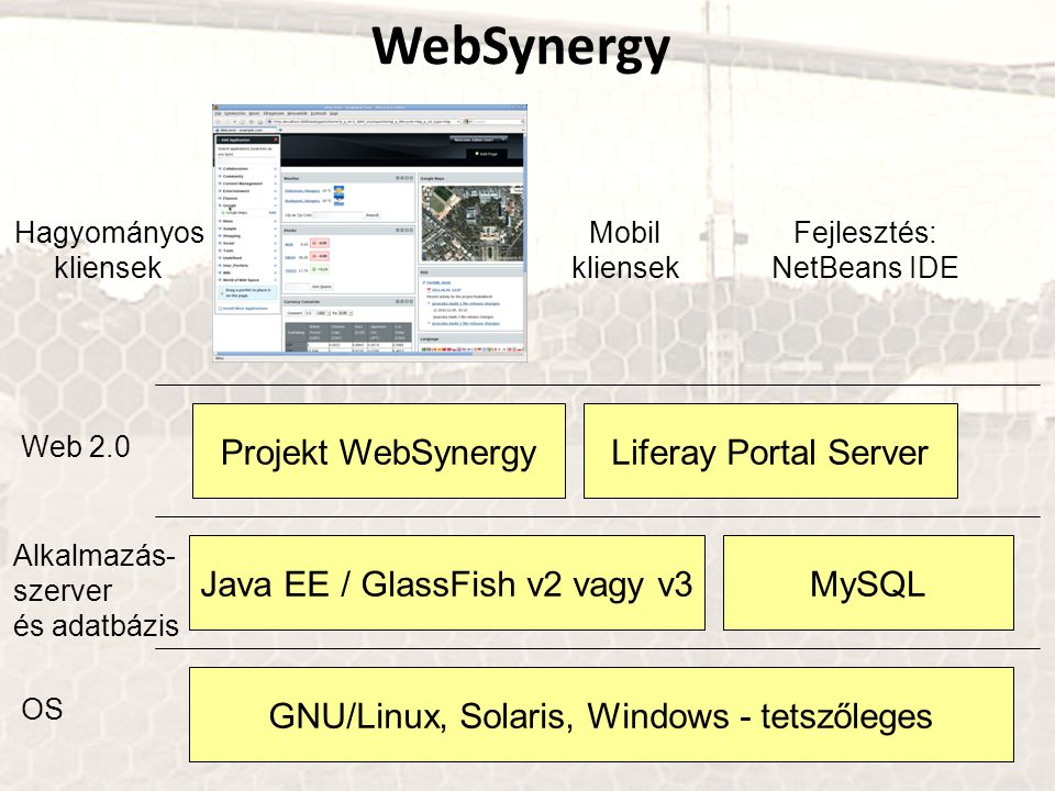 WebSynergy Projekt WebSynergy Liferay Portal Server