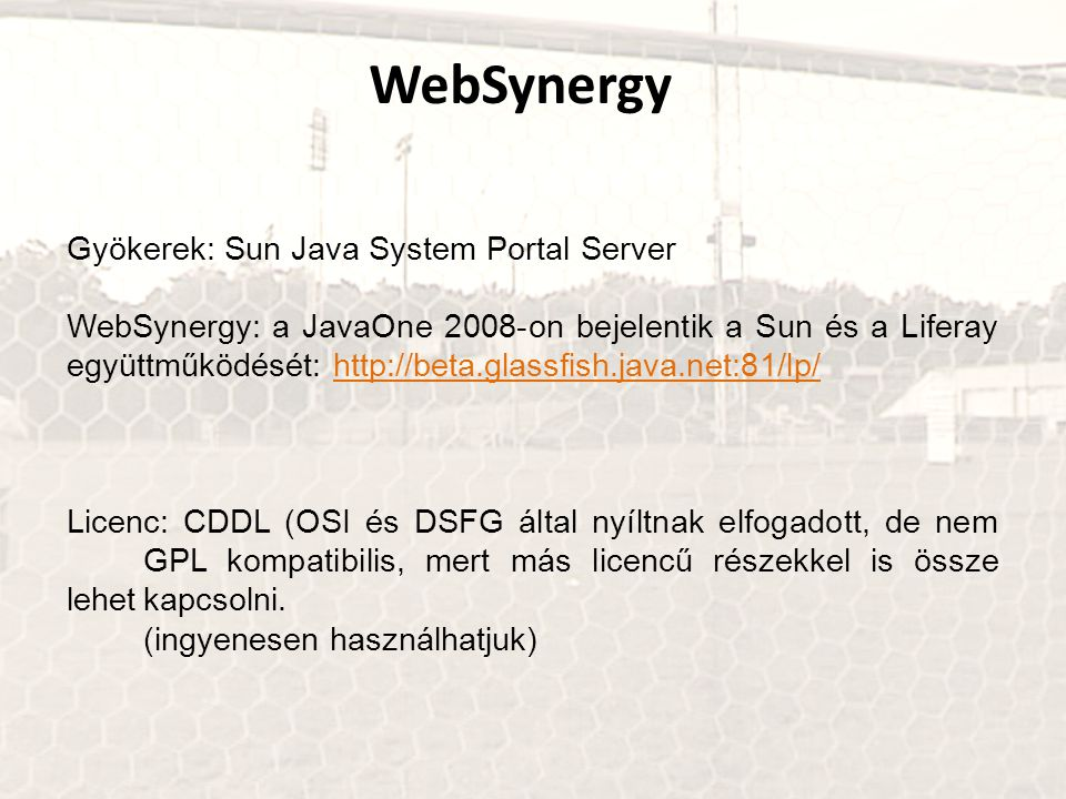 WebSynergy Gyökerek: Sun Java System Portal Server