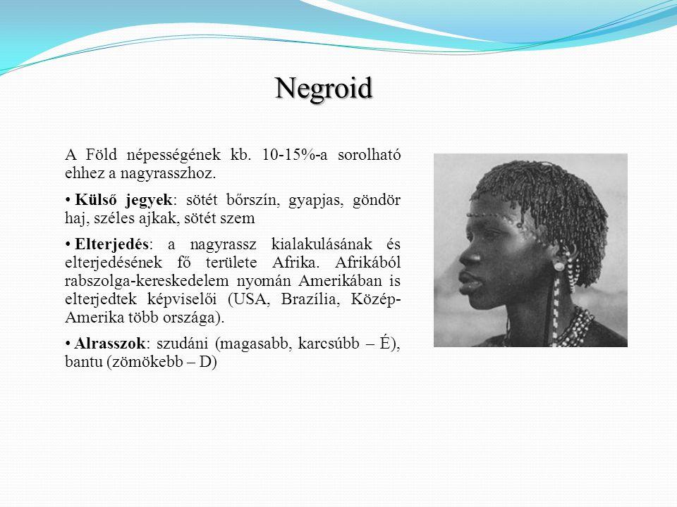 Negroid A Föld népességének kb. 10-15%-a sorolható ehhez a nagyrasszhoz. Külső jegyek: sötét bőrszín, gyapjas, göndör haj, széles ajkak, sötét szem.