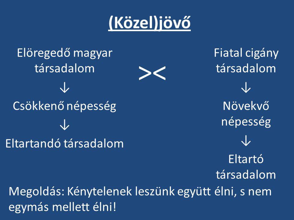 (Közel)jövő Elöregedő magyar társadalom ↓ Csökkenő népesség Eltartandó társadalom Fiatal cigány társadalom.