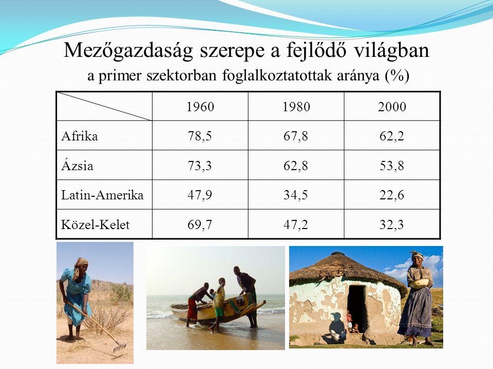 Mezőgazdaság szerepe a fejlődő világban