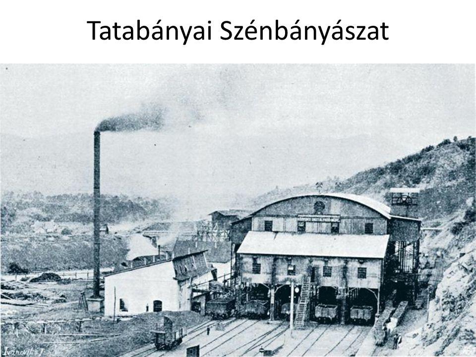 Tatabányai Szénbányászat