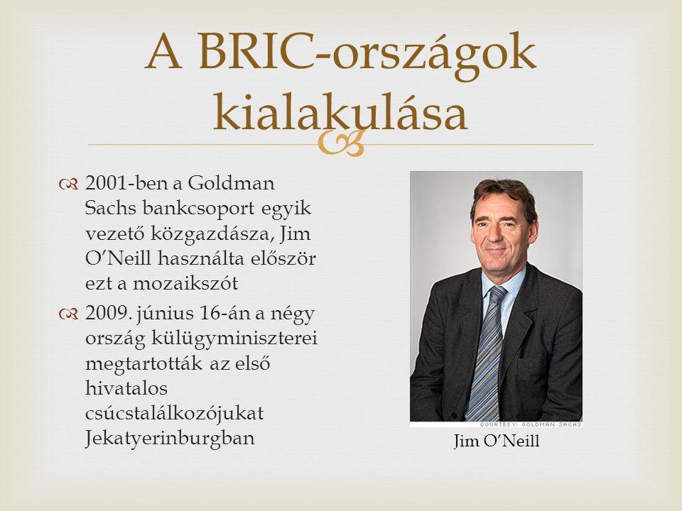 A BRIC-országok kialakulása