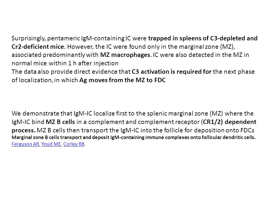 Surprisingly, pentameric IgM-containing IC were trapped in spleens of C3-depleted and Cr2-deficient mice. However, the IC were found only in the marginal zone (MZ), associated predominantly with MZ macrophages. IC were also detected in the MZ in normal mice within 1 h after injection