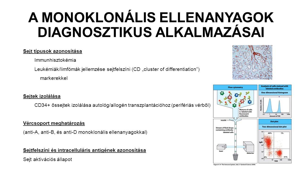 A MONOKLONÁLIS ELLENANYAGOK DIAGNOSZTIKUS ALKALMAZÁSAI