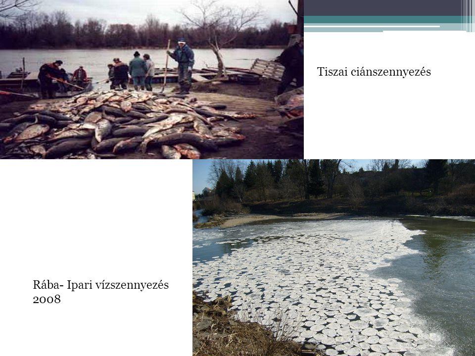 Tiszai ciánszennyezés