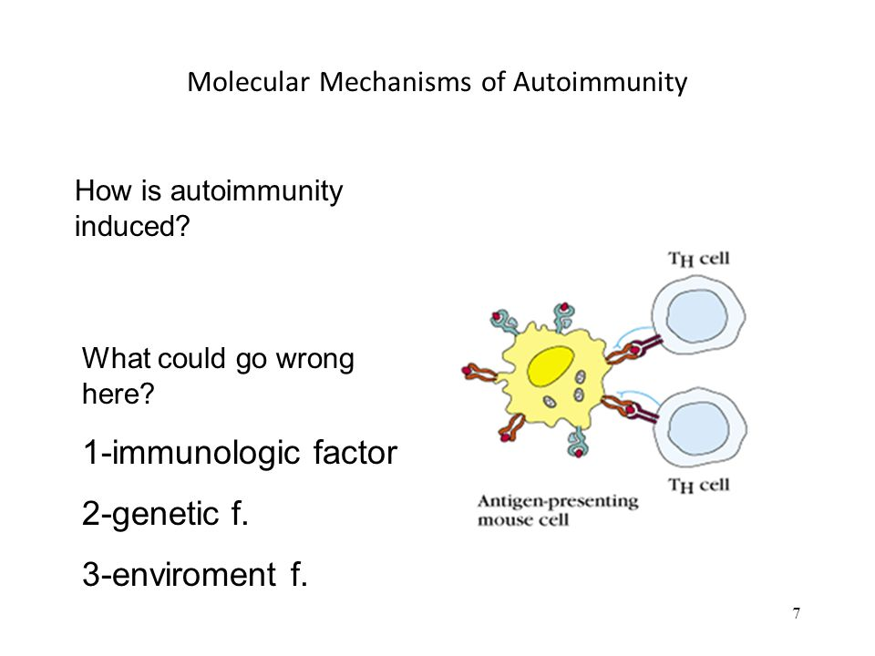 Molecular Mechanisms of Autoimmunity