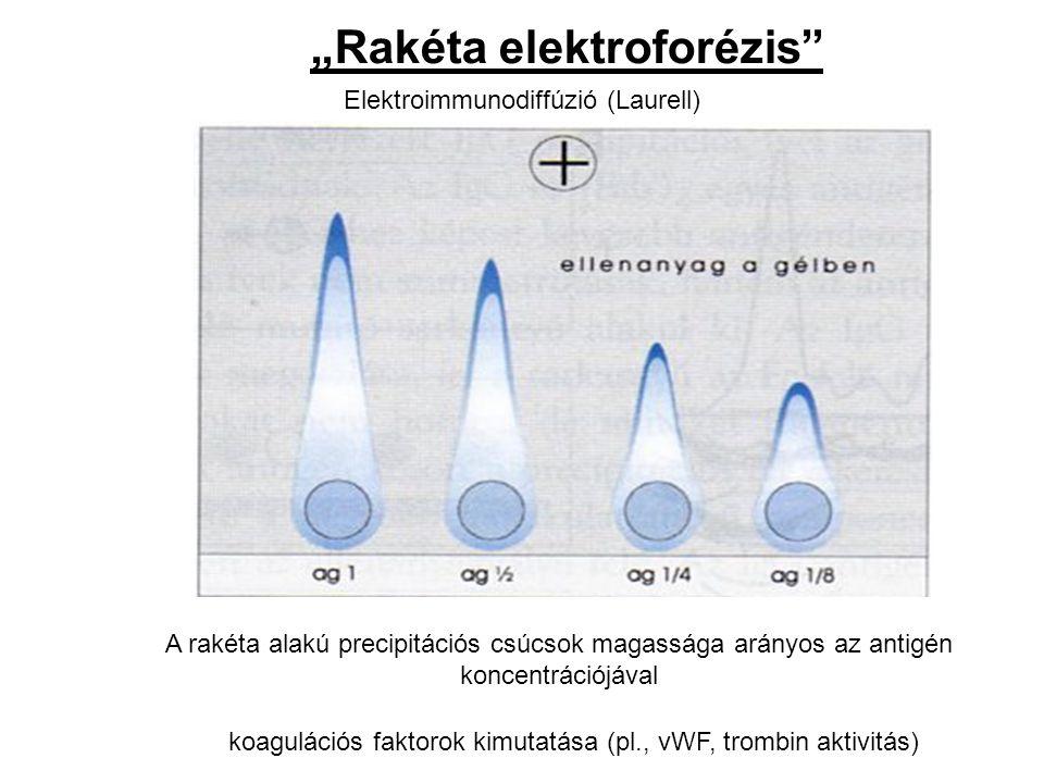 Elektroimmunodiffúzió (Laurell)