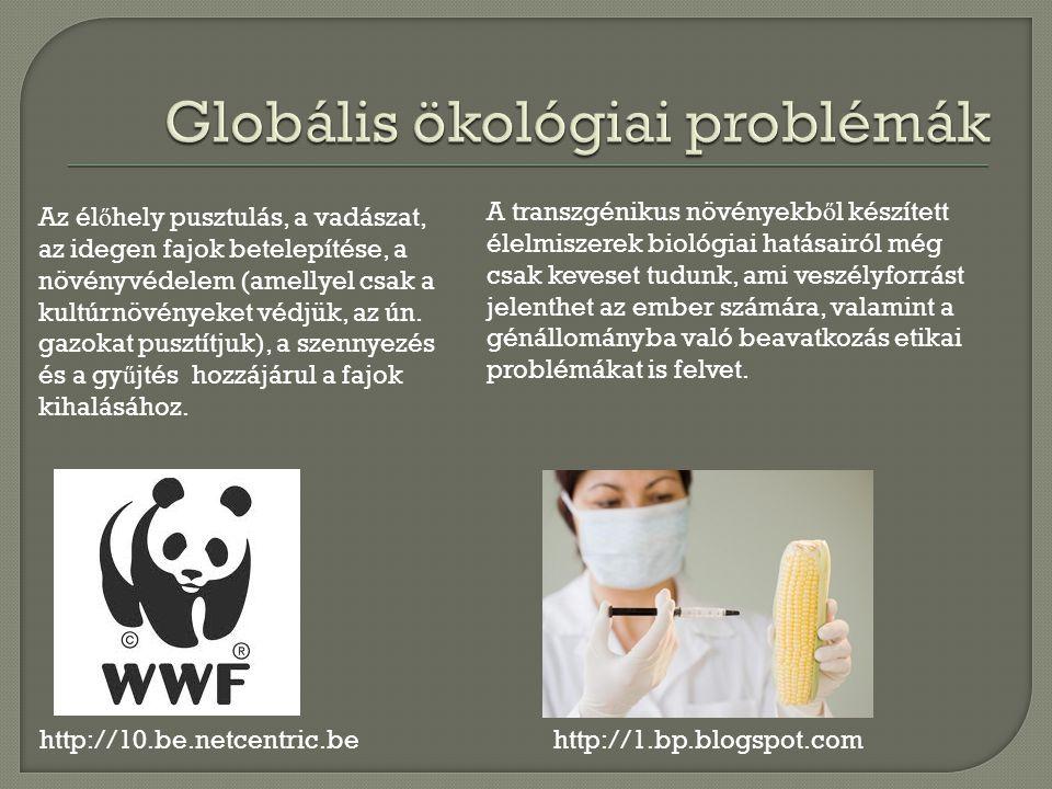 Globális ökológiai problémák