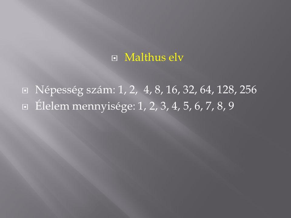 Malthus elv Népesség szám: 1, 2, 4, 8, 16, 32, 64, 128, 256.