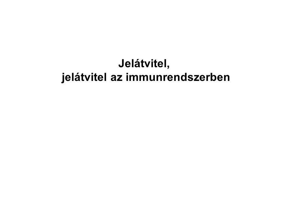 jelátvitel az immunrendszerben