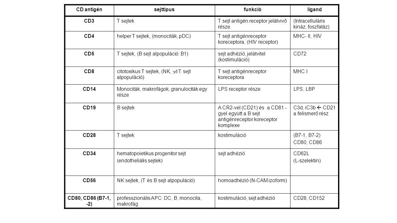 CD antigén sejttípus. funkció. ligand. CD3. T sejtek. T sejt antigén receptor jelátvivő része.