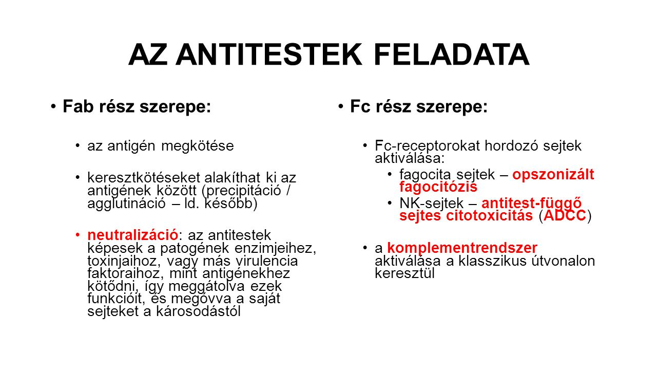 AZ ANTITESTEK FELADATA