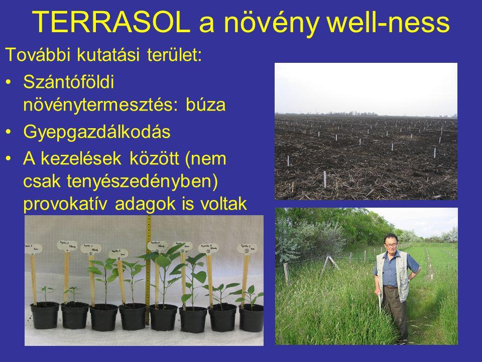 TERRASOL a növény well-ness