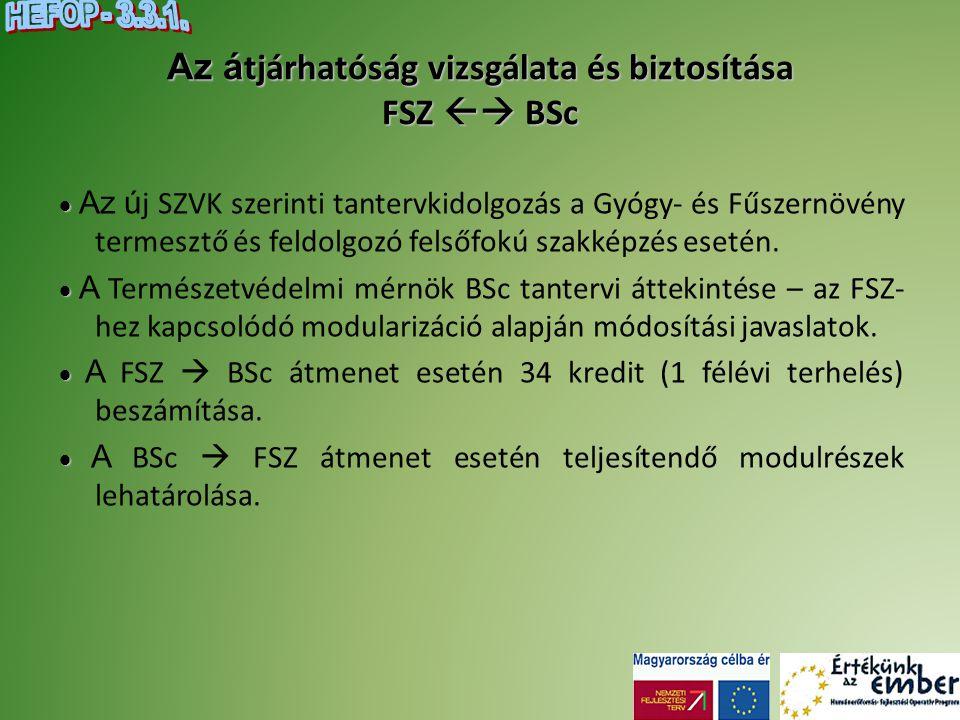 Az átjárhatóság vizsgálata és biztosítása FSZ  BSc