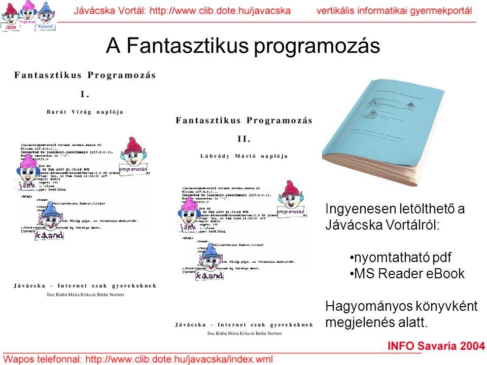A Fantasztikus programozás