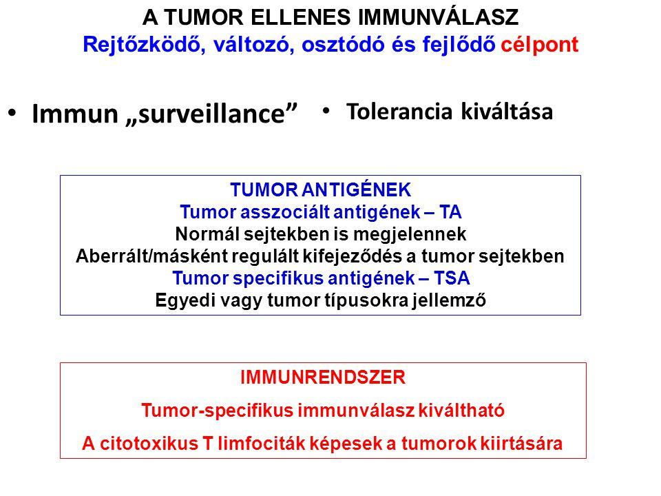 """Immun """"surveillance Tolerancia kiváltása A TUMOR ELLENES IMMUNVÁLASZ"""