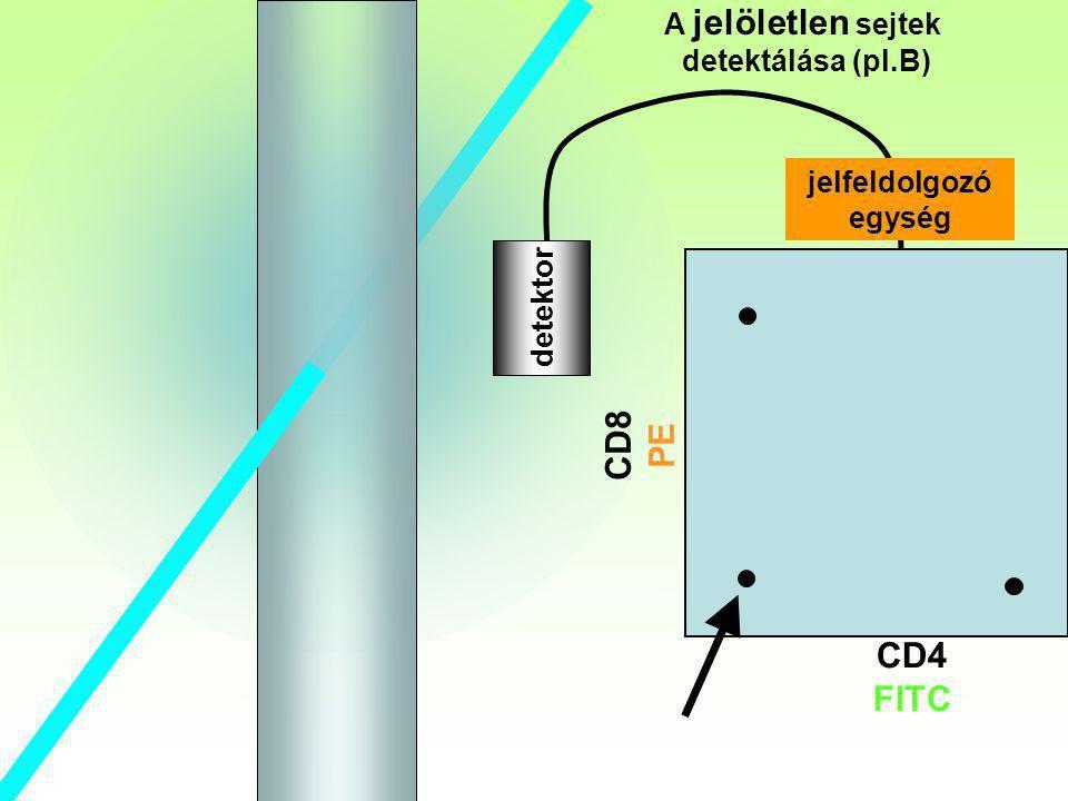 B CD8 PE CD4 FITC A jelöletlen sejtek detektálása (pl.B)