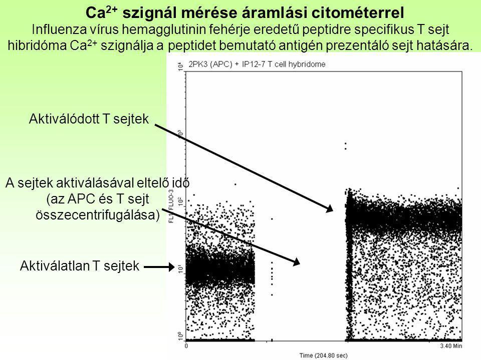 Ca2+ szignál mérése áramlási citométerrel